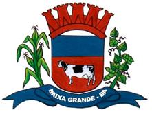 Brasão: Câmara Municipal de Baixa Grande