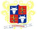 Brasão: Prefeitura Municipal de Itapetinga
